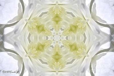 Digital Art - White Arctic Queen Kaleidoscope by J McCombie