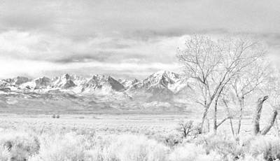 Photograph - Winter by Marilyn Diaz