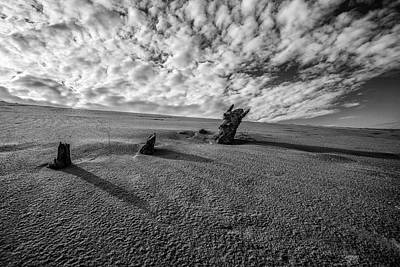 Photograph - 3 Wood At The Dunes Black And White  by John McGraw