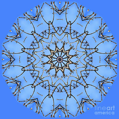 Digital Art - Bare And Blue by Wendy Wilton