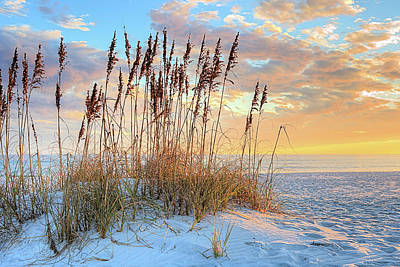 Photograph - 30 A In South Walton by JC Findley