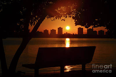 Photograph - 30- Sunrise In The Park by Joseph Keane