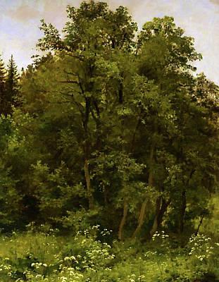 Park Painting - Nature Landscape Art by Edna Wallen