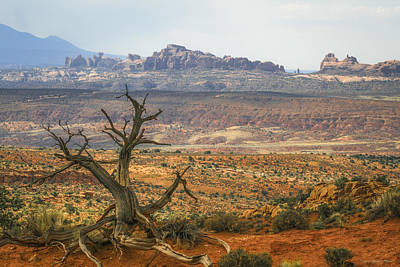 Photograph - #3090 - Moab, Utah by Heidi Osgood-Metcalf