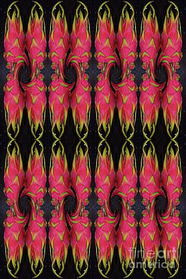 Photograph - 32 Dragon Fruit by Expressionistart studio Priscilla Batzell
