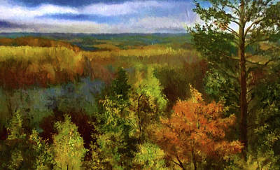 Sky Painting - Nature Landscape Nature by Edna Wallen