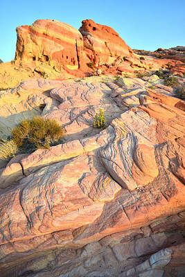 Valley Of Fire Art Print by Ray Mathis