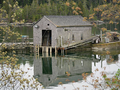 Photograph - Down East Maine  by Trace Kittrell