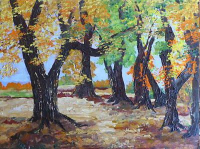#35 Cottonwood Colors Art Print