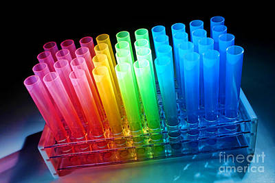 Rack Photograph - Laboratory Test Tubes In Science Research Lab by Olivier Le Queinec