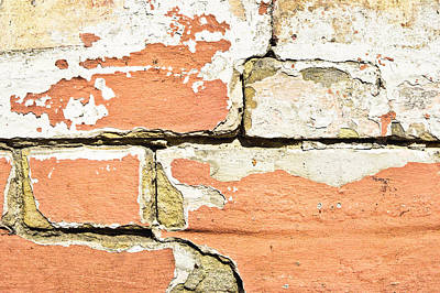 Defects Photograph - Brick Wall by Tom Gowanlock