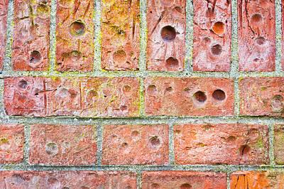 Unrest Photograph - Brick Wall by Tom Gowanlock