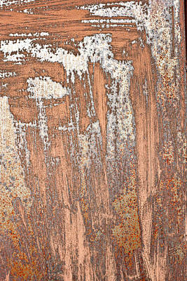 Messy Photograph - Rusty Metal by Tom Gowanlock