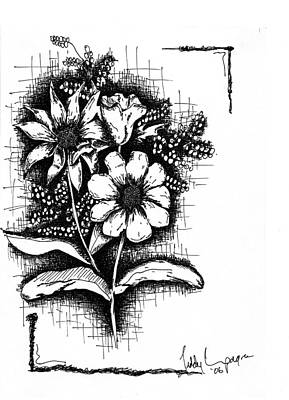 Carnation Drawing - Untitled by Teddy Campagna