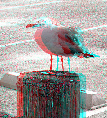 Photograph - 3d Gull by Joel Gilgoff
