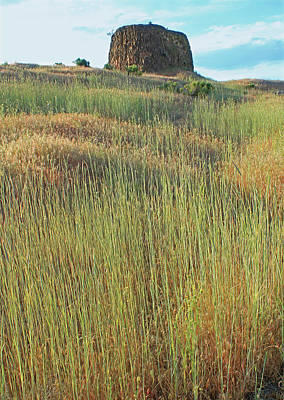 Photograph - 3d5789 Hat Rock And Spring Grass by Ed Cooper Photography