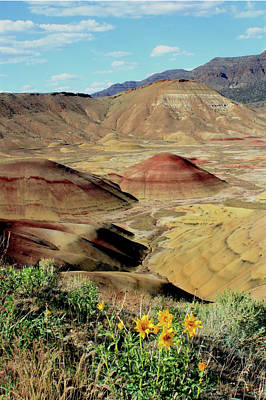 Photograph - 3da5752 Painted Hills John Day Fossil Beds Nat Mon V by Ed Cooper Photography