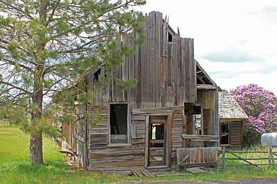 Photograph - 3da5781 Scene In Hardman Ghost Town by Ed Cooper Photography