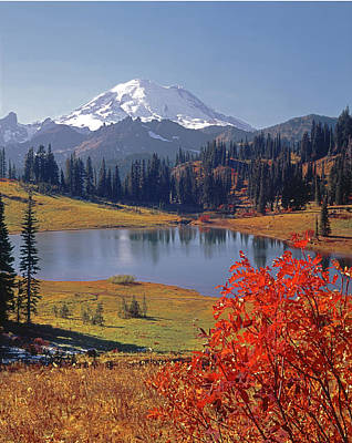 Photograph - 3m4825 Tipsoo Lake And Mt. Rainier by Ed Cooper Photography