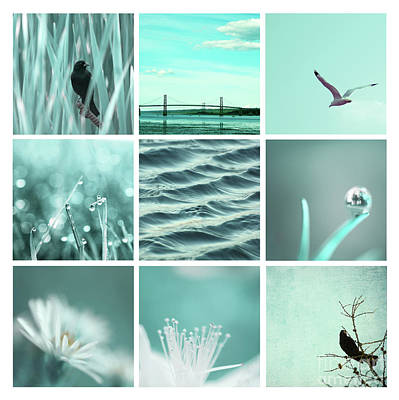 Photograph - 3x3 Aqua Blue by Aimelle