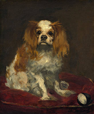 Manet Painting - A King Charles Spaniel by Edouard Manet