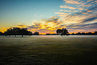 Lucille Ball - Abstract Sunrise Landscape On The Farm In Florida by Alex Grichenko