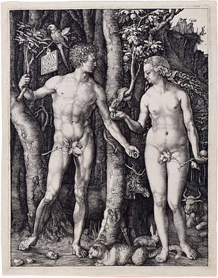 Drawing - Adam And Eve by Albrecht Durer