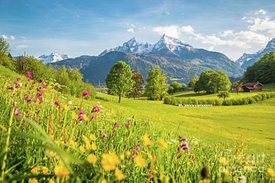 Photograph - Alpine Beauty by JR Photography
