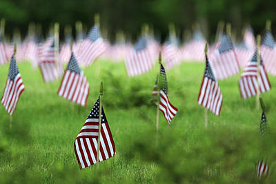 Photograph - American Flags Calverton New York by Bob Savage