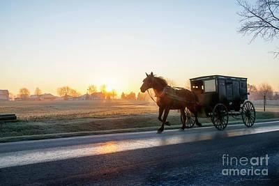 Photograph - Amish Buggy At Dawn by David Arment