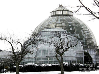 Photograph - Architecture Greehouse Botanical Garden Conservatory by Monica C Stovall