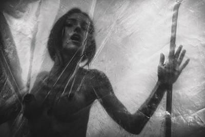 Photograph - Artemisys by Traven Milovich