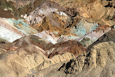 Winter Animals - Artist Palette Death Valley National park by Pierre Leclerc Photography