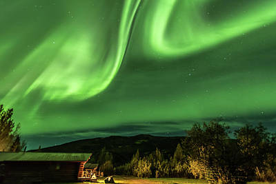 Photograph - Aurora Borealis, Northern Lights In Denali National Park by Brenda Jacobs