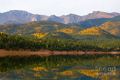 Steven Krull Royalty-Free and Rights-Managed Images - Autumn Aspen at Crystal Creek Reservoir Pikes Peak by Steven Krull