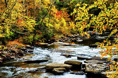 Autumn Middle Fork River Art Print