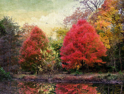 Red Leaf Digital Art - Autumn Reflected by Jessica Jenney