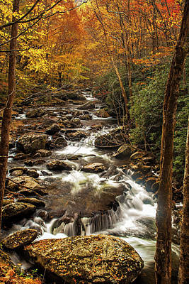 Photograph - Autumn Stream by Andrew Soundarajan