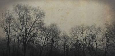 Bare Branch Horizon Art Print by JAMART Photography
