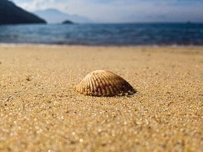 Photograph - Beach by Cesar Vieira