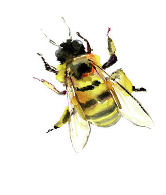 Print Making Painting - Bee by Suren Nersisyan