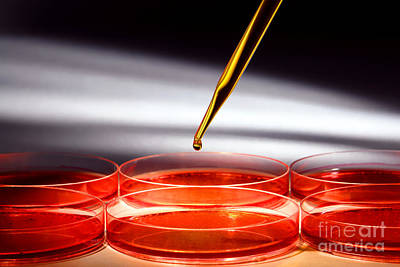 Biotechnology Experiment In Science Research Lab Art Print