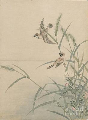 Bird Of Prey Painting - Birds Of Japan In The 19th Century by Celestial Images