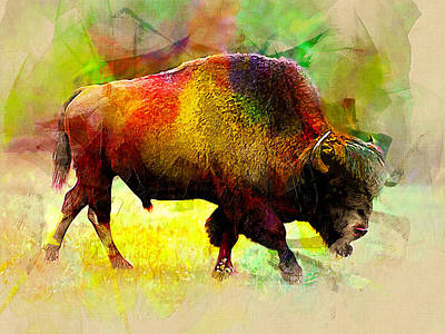 Bison Art Print by Elena Kosvincheva