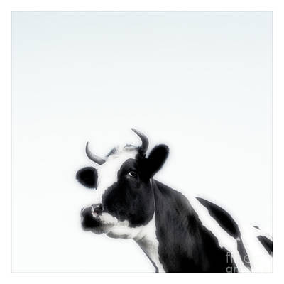 Black And White Nature Landscape Photography Art Work Art Print