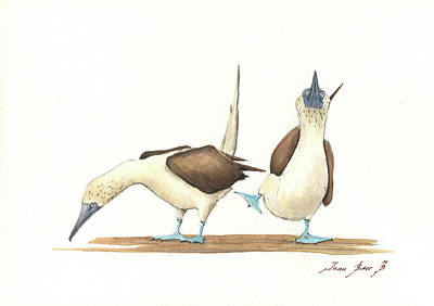 Painting - Blue Footed Boobies by Juan Bosco