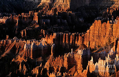 Photograph - Bryce Canyon National Park Hoodo Monoliths Sunrise Southern Utah by Jim Corwin