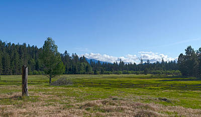 Target Threshold Nature - Cascade Mountains Meadow by James Little