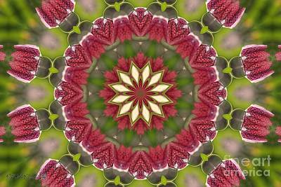 Digital Art - Checkered Lilies Mandala by J McCombie