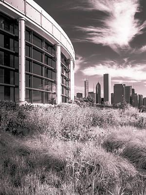 Photograph - Chicago Skyline by Lev Kaytsner
